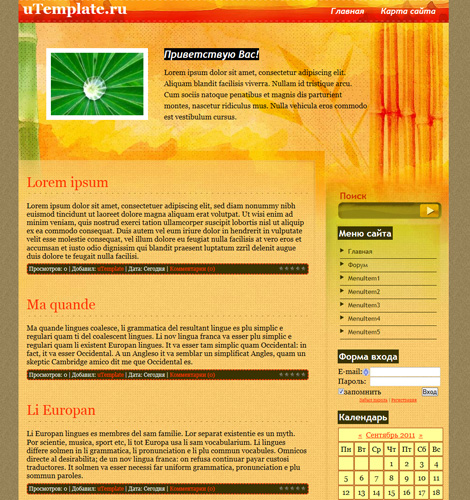 Новый оранжевый шаблон для uCoz